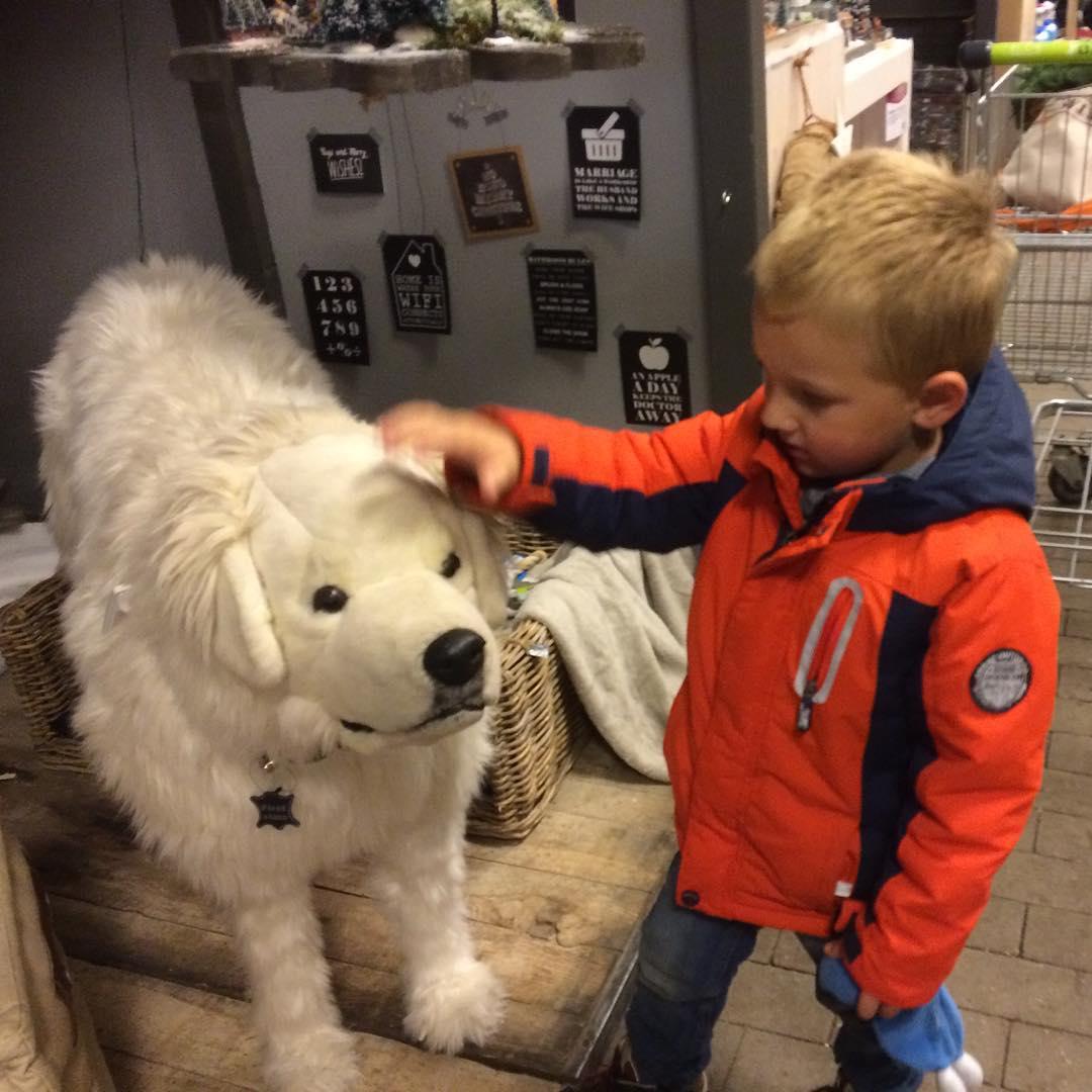 #goedemorgen365 even de grote #hond aaien